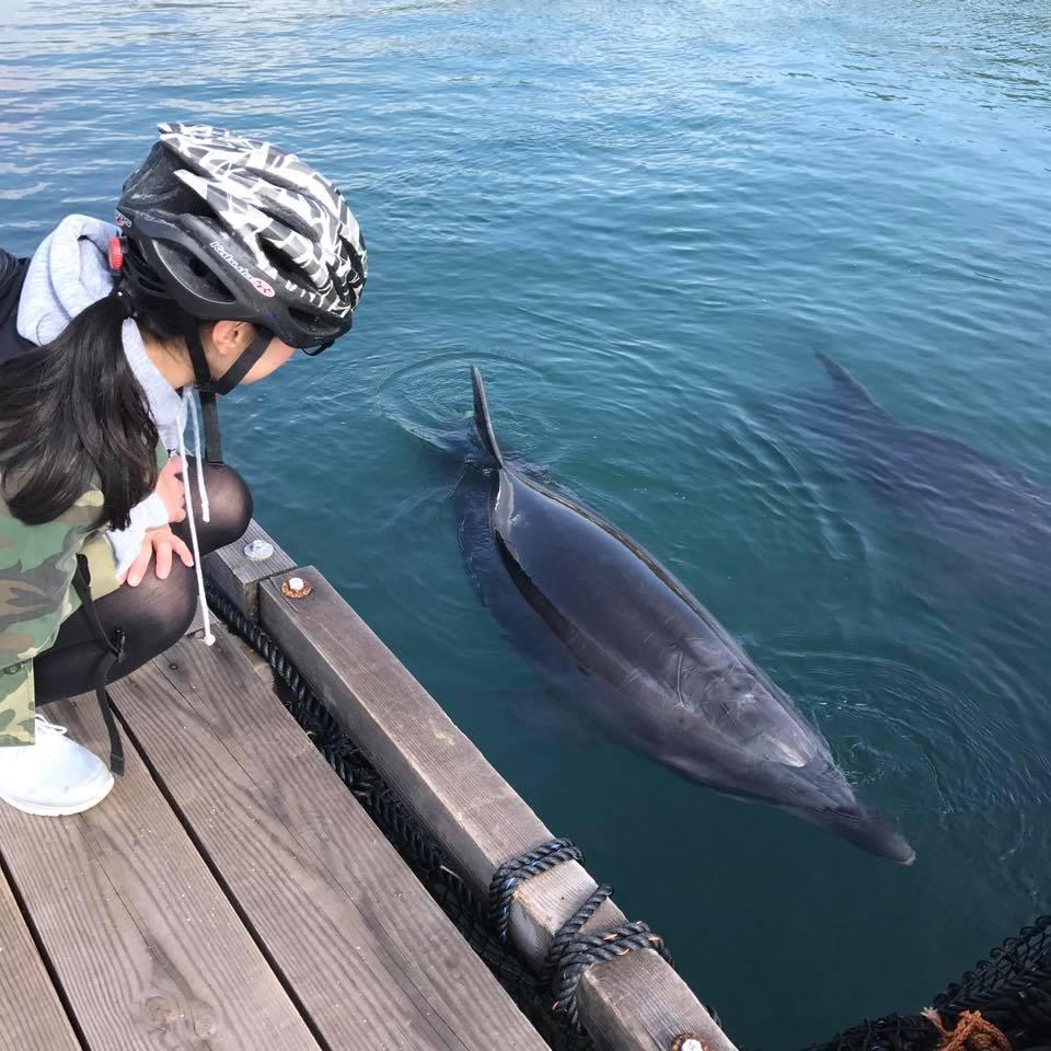 愛媛 水族館